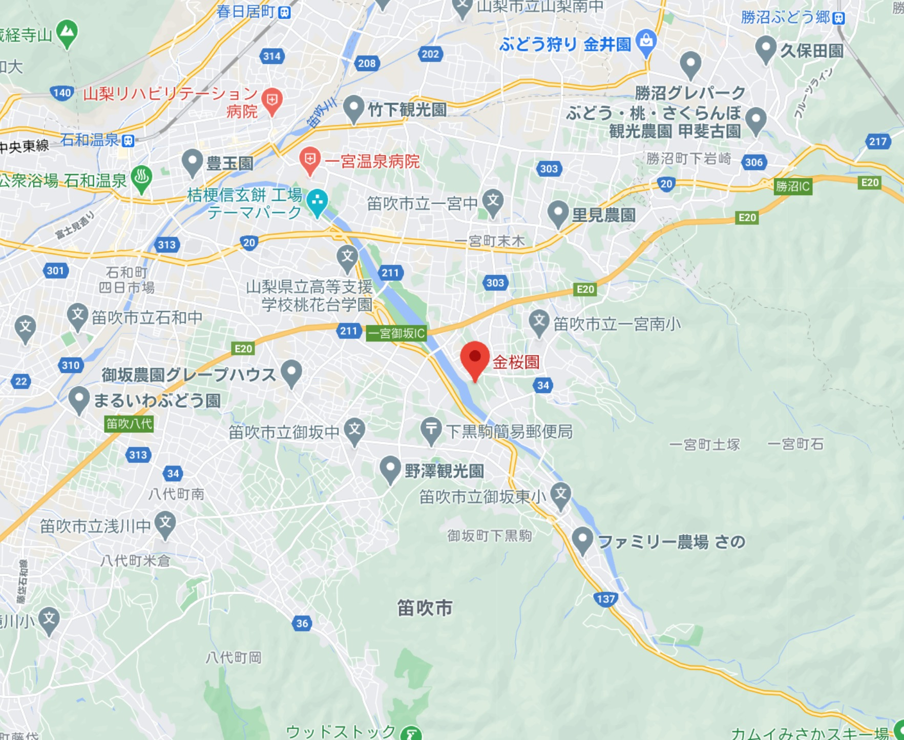 金桜園 地図