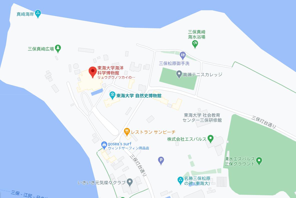 静岡で子どもと行くなら東海大学海洋科学博物館!楽しく学ぼう!