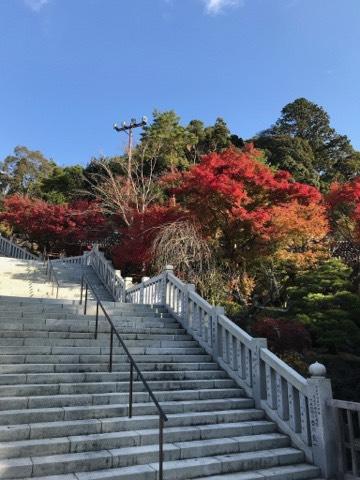 法多山尊永寺名物の厄除だんごがおいしい!イベントもたくさん!