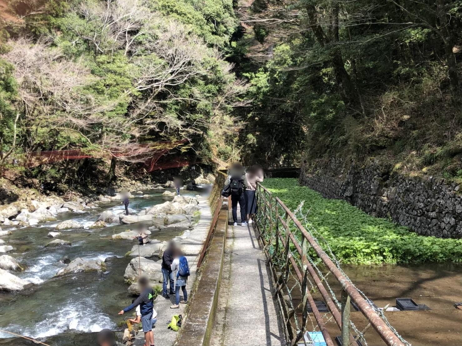 浄蓮の滝 隠れ道